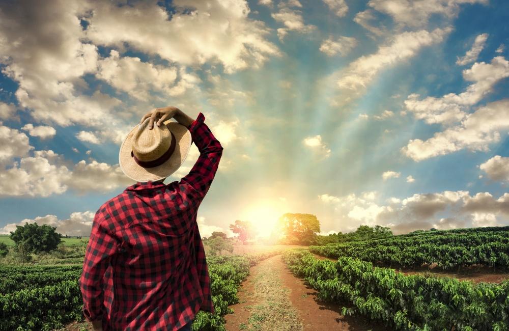 農業で生きる男