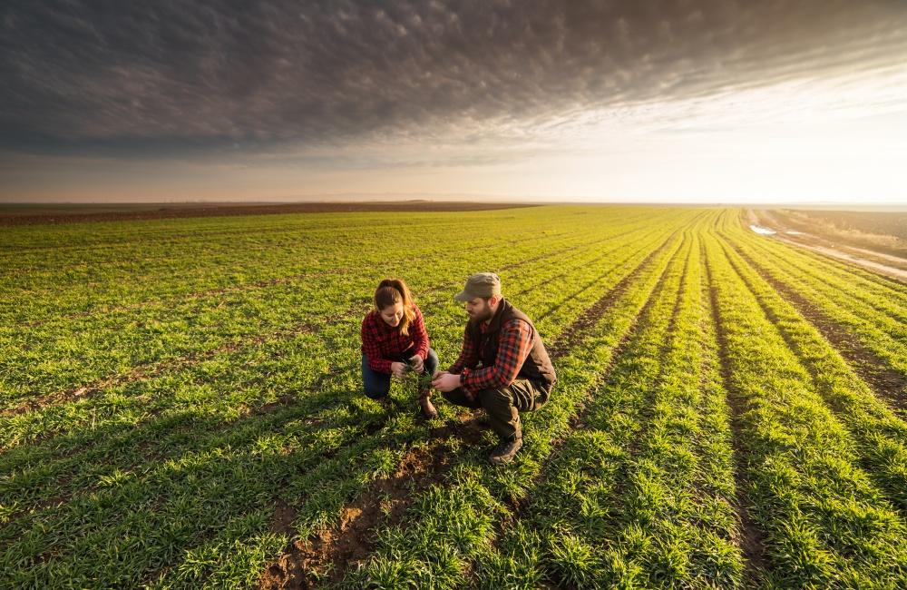 畑で話し合う農家の若い夫婦