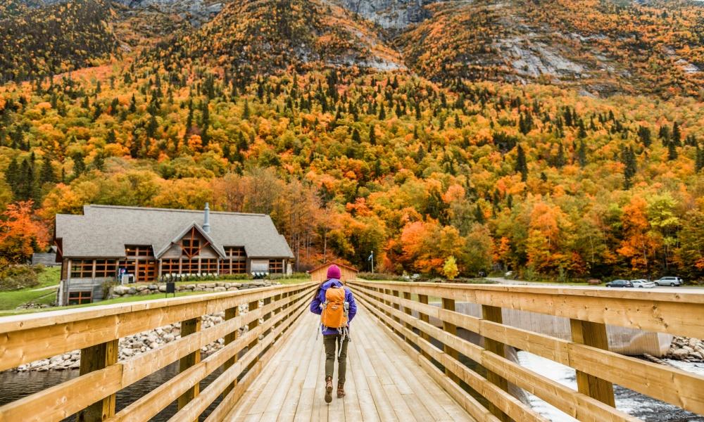 秋の山を散策する女性