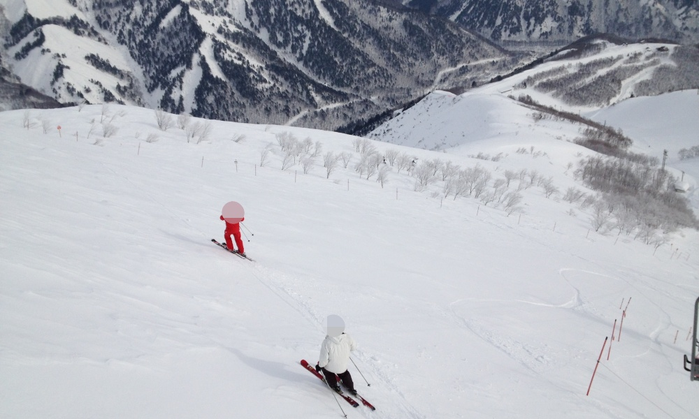 スキー場を滑るスキーヤー