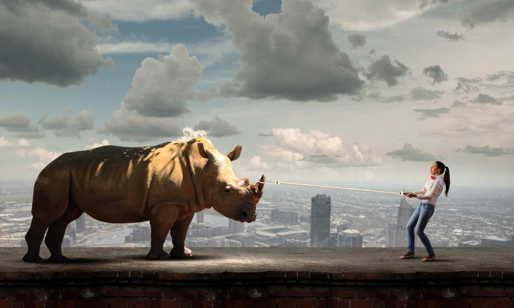 屋上にいるサイと女性